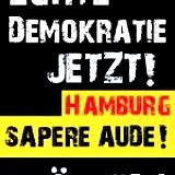 """""""Echte Demokratie jetzt"""""""